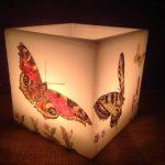 vela fanal mariposas